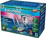 *JBL BabyHome Oxygen 6432000, Premium-Ablaichkasten, Komplettset mit Luftpumpe