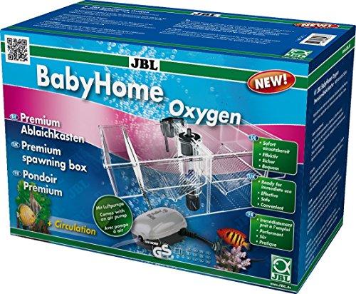 JBL BabyHome Oxygen 6432000, Premium-Ablaichkasten, Komplettset mit Luftpumpe