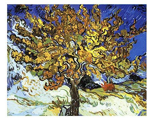 WYMADAL DIY Malen Nach Zahlen Landschaft Van Gogh Bild Acrylfarbe Nach Zahlen Wandkunst Bild Nach Zahlen AG-1838 Rahmenlos 40cmx50cm