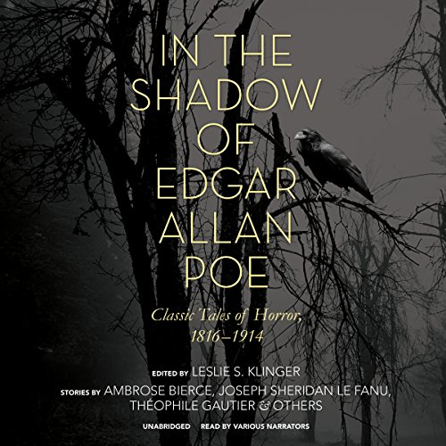 In the Shadow of Edgar Allan Poe audiobook cover art