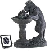 Best solar powered dog fountain Reviews