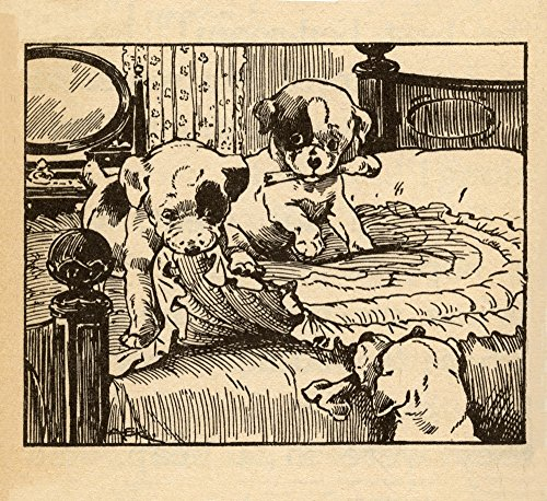 Two puppies destroy a blanket on the bed Poster Print by AEK (24 x 36)