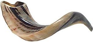 "Judaica Mega Mall Kosher ODORLESS شاخ قوچ طبیعی جلا   قطعه صاف برای آسان شامل حمل کیف و راهنمای دمیدن شفار   اندازه متوسط (12 ""-14"") (Jud-0651)"