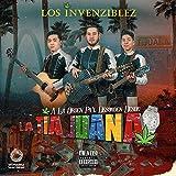 Las Gemelas del Chapo (Live)
