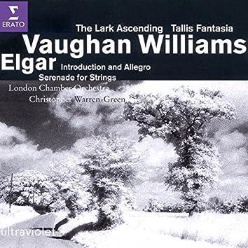 Elgar/Vaughan Williams - String Music