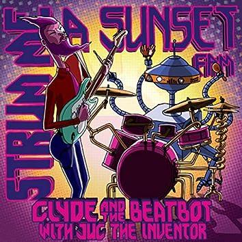 Strum Me A Sunset Fam