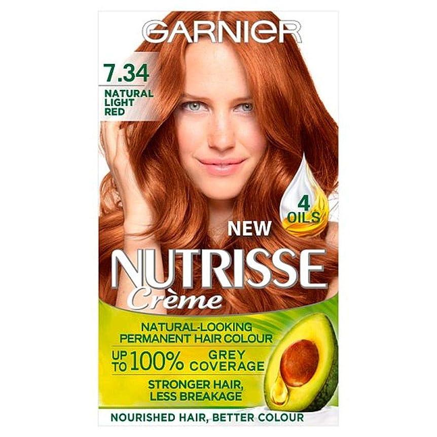 マネージャー三テープ[Garnier ] ガルニエNutrisse自然光赤永久染毛 - Garnier Nutrisse Natural Light Red Permanent Hairdye [並行輸入品]