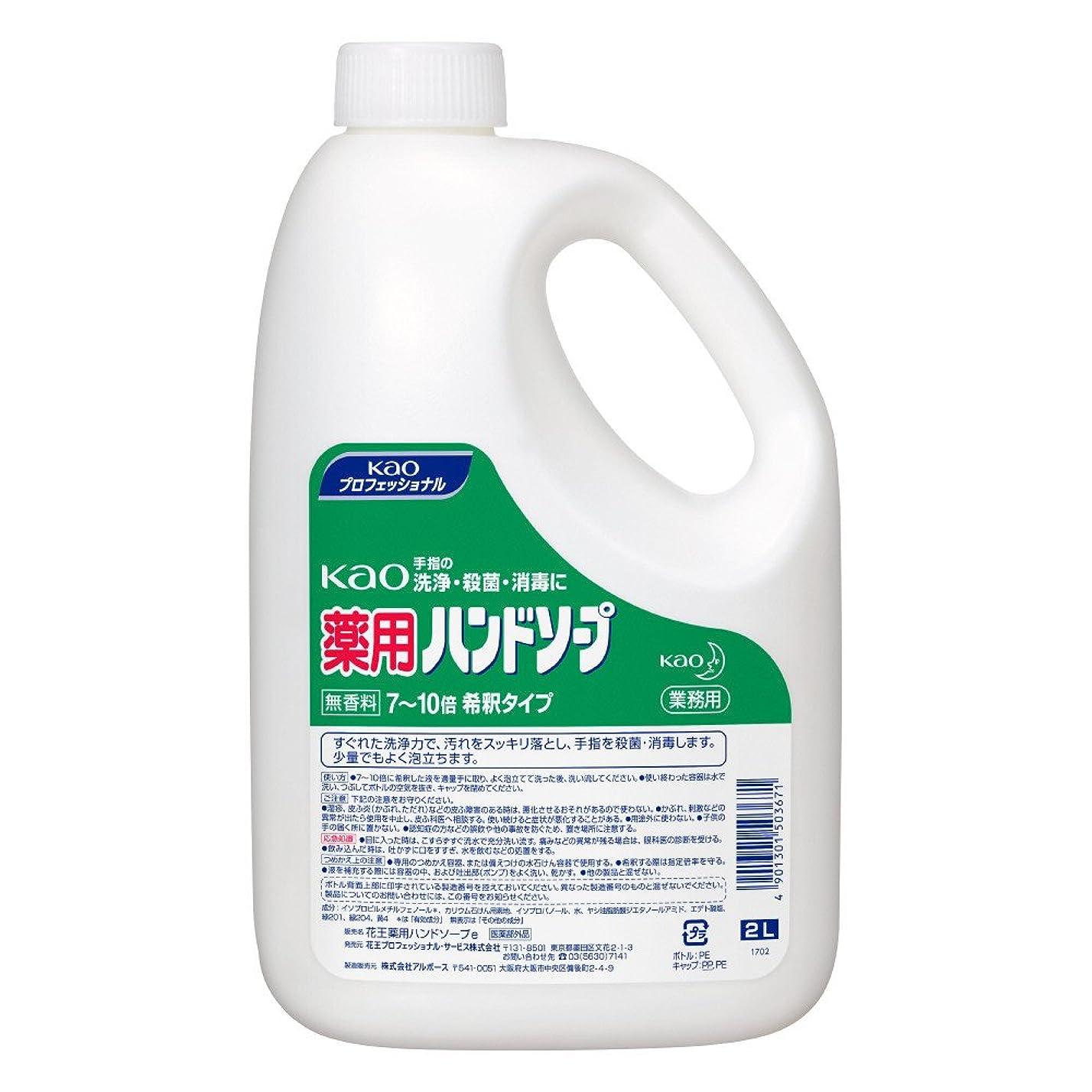 議題研究ソーダ水【業務用 ハンドソープ】Kao 薬用 ハンドソープ 2L(花王プロフェッショナルシリーズ)