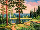 Gofission Paint by Numbers Forest Trees Lake Grass, 16 x 20 pulgadas, kits de pintura numérica (bosque, sin marco)
