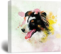 wall26 Square Dog Series Canvas Wall Art - A Border Collie Painting with Color Splash Background - Giclee Print Gallery Wrap Modern Home Decor Ready to Hang - 24x24 inches