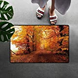 DGGGD Fall Commercial Grade Entrance Mat Footpath In Foggy Woods Peaceful September Serene Idyllic Country Theme For Entrances Garages Patios Orange Redwood Yellow 16x24(IN)