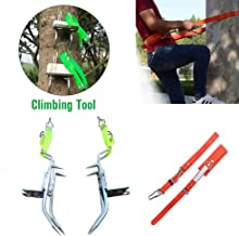 Best palm tree climbing shoes Reviews