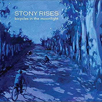 Bicycles In the Moonlight