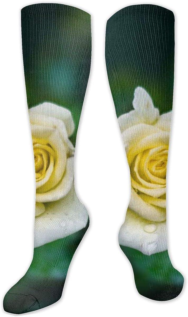 Yellow Rose Flower Bud Drops Knee High Socks Leg Warmer Dresses Long Boot Stockings For Womens Cosplay Daily Wear