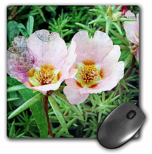 3dRose Cassie Peters Florals - Rose Moss Collage by Angelandspot - Mousepad (mp_192937_1)