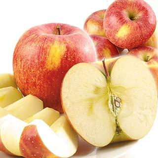 国華園 青森産 ご家庭用 葉とらずふじ 20㎏1箱 木箱 りんご