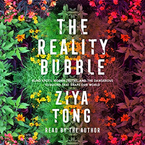 The Reality Bubble audiobook cover art