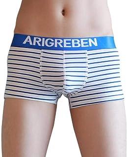 HaiDean Striped Men's Briefs Boxer Casual Under Modern Warming Shear Boxer Shorts Bulge Pouch Underpants Panties Underwear