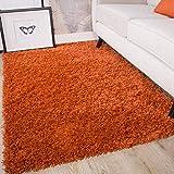 Ontario Terracotta Orange Soft Warm Thick Shaggy Shag Fluffy Living Room Area Rug