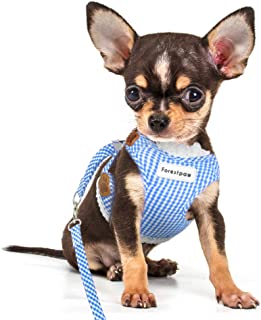 Forestpaw Adjustable Pet Mesh Vest Harness with Leash for Puppy Small Medium Dog and Cat Pink/Blue,S/M,Poodle,Chihuahua,Jack Russell,Pug