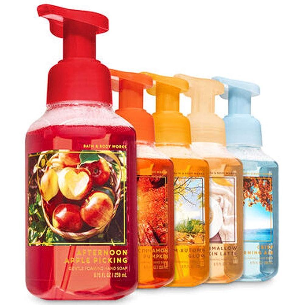 首静める意識的FALL TRADITIONS Gentle Foaming Hand Soap, 5-Pack [海外直送品]