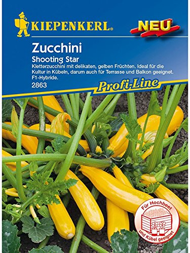 Zucchini Shooting Star