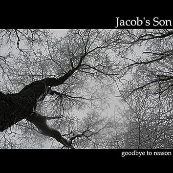 Goodbye To Reason