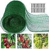 12m x 4m Malla Antipajaros, Red Protección para Campos, Cultivos, Malla Antipájaros de Color Verde para Protección de Jardín, Plantas, Cargas Pesadas, Árboles de Frutas