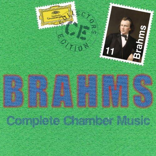 Various artists & Johannes Brahms