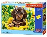 Castorland Puppy in Yellow 180 pcs Puzzle - Rompecabezas (Puzzle Rompecabezas, Fauna, Niños, Perro, Niño/niña, 7 año(s))