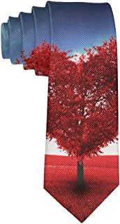 Men's Casual Valentine's Day PartyTies, Business Meeting Wedding Suit Necktie