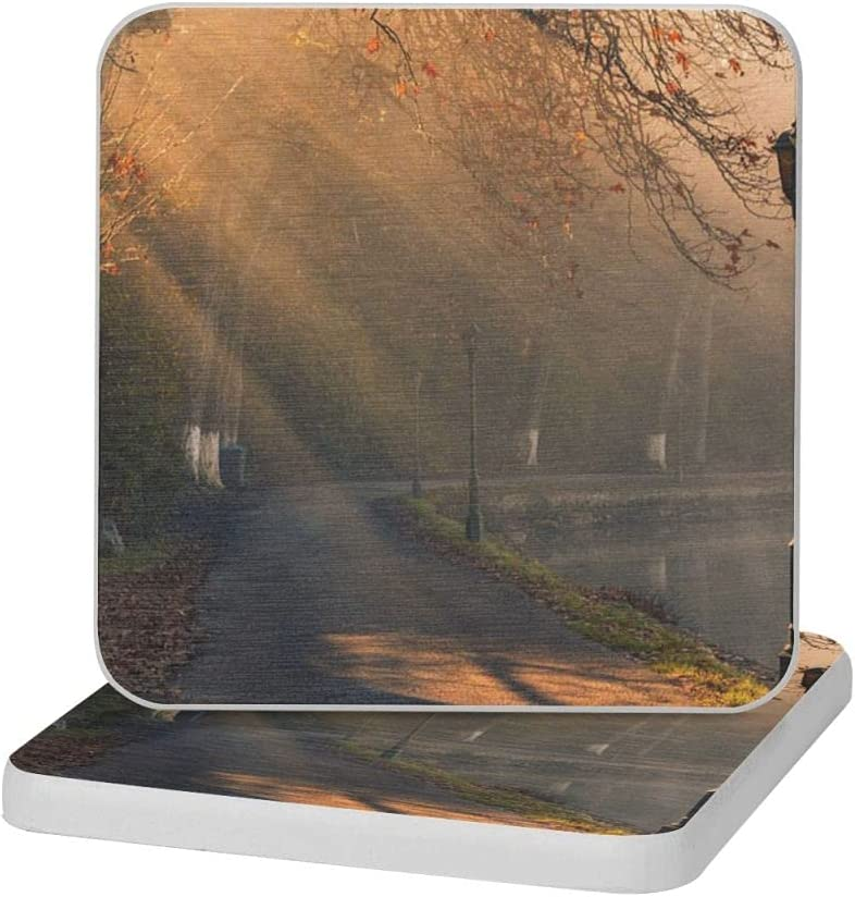Scenery Free shipping on posting reviews Tree Classic Diatomite Cup Raleigh Mall Deco Home Mat Coaster 4x4inch
