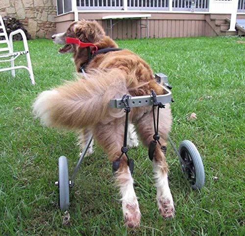 Geyao 2 Ruedas de aleación de Aluminio Movilidad Perro Ajustable Silla de Ruedas Silla de Ruedas Flexible for el Perro más Grande o Perros pequeños Hind 7 kg de Peso piernas Rehabilitación de 25kg