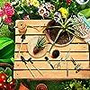 Kit de Test de Sol avec 10 Outils Bonsaï - Capteur d'humidité du Sol 3 en 1 - kit Outil de Jardinage avec Sécateur Ciseaux, Pliable, Mini Rteau pour Jardin, Ferme, Pelouse #4