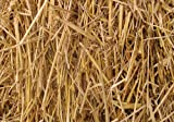 Thunder Acres 4 Pounds 100 Percent Natural Wheat Straw (4 lbs.)