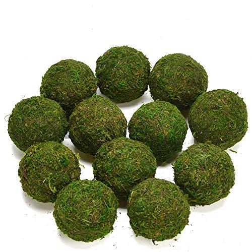 Byher Natural Green Moss Decorative Ball,Handmade (3.5'-Set of 6)