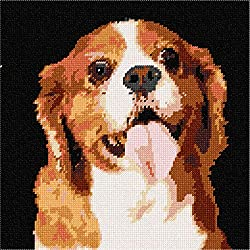 Cavalier King Charles Spaniel 2 Needlepointキャンバス Canvas & Thread 6966[Amazon/Pepita]