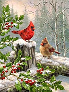 DIY Oil Painting Paint by Numbers Kits for Adult Paint Color According to The Numbers on The Canvas 16x20 inch - Two Cardinals in The Snow, Drawing with Brushes Christmas Decor (Without Frame)