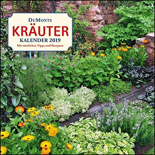 DuMonts Kräuter-Kalender 2019 - Broschürenkalender - mit Texten und Rezepten - Format 30 x 30 cm: Mit nützlichen Tipps und Rezepten