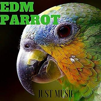Edm Parrot Just Music