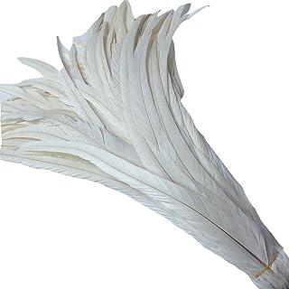Juego KOLIGHT de 50 plumas de gallo, naturales, de 35,5-40,64 cm para bricolaje, decoración de casa, boda, fiesta, oficina
