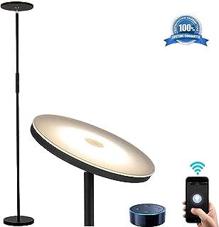 Best torchiere floor lamp glass Reviews