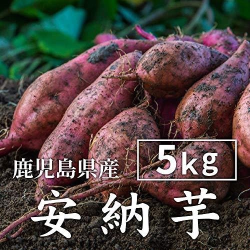 安納芋 5kg 土付き 生芋 (M〜2Lサイズ混合) 鹿児島県産 さつまいも あんのういも