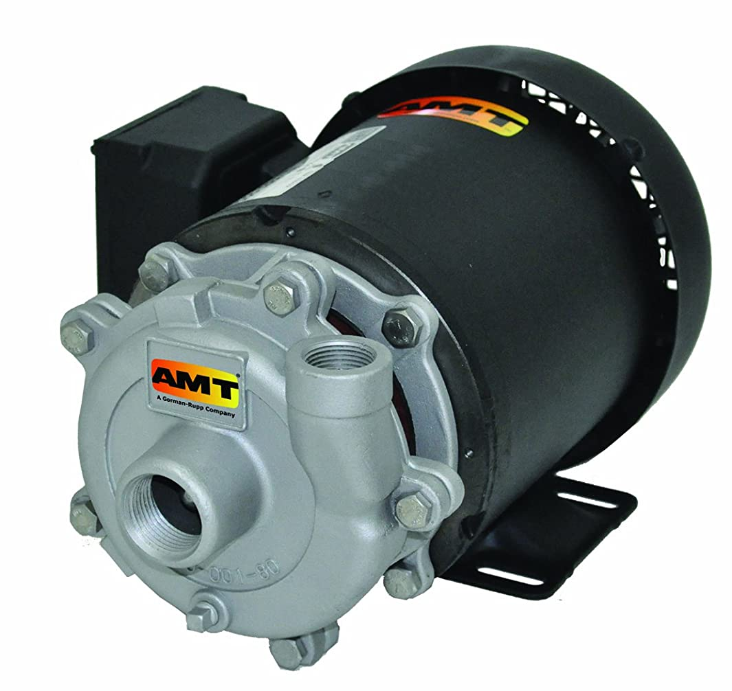 AMT Pump 368A-98 Straight Centrifugal Pump, Stainless Steel, 1/3 HP, 1 Phase, 115/230V, Curve A, 3/4