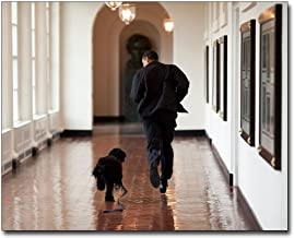 President Barack Obama and Family Dog Bo in White House 16x20 Silver Halide Photo Print