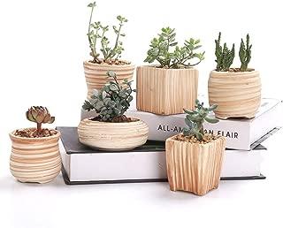 Best wood succulent pot Reviews