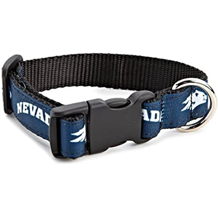 Team Color, Small NCAA Nevada Wolf Pack Dog Leash