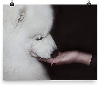 Regali Samoiedo per gli amanti del Samoiedo, Poster Stampe su tela di varie dimensioni, Arte della parete del cane Samoied...