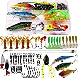SUPERTHEO Fishing Lures Fishing Spoons Frog Lures Soft Hard Metal Lure Crank Popper Minnow Pencil Jig Hook for Trout Bass Salmon with Tackle Box