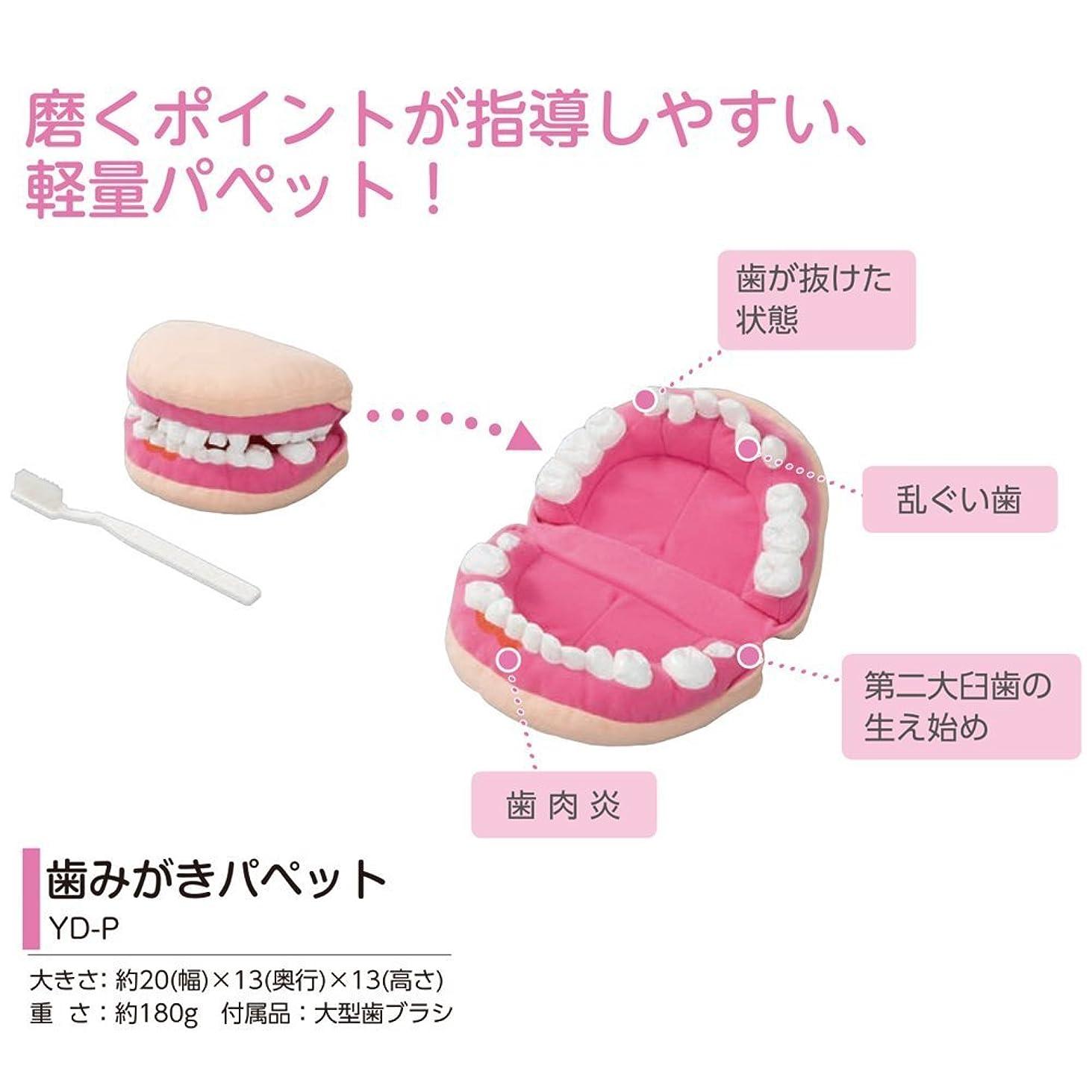 バンガロー変色するしょっぱい歯磨き指導用パペット YD-P 人形 ぬいぐるみ 歯みがきパペット